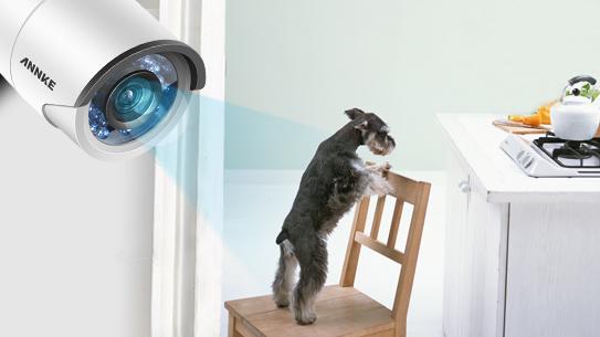 ANNKE 2CH 1080P HD TVI IP66 CCTV Bullet Security Camera-C51BS