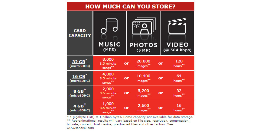 SanDisk 8GB microSDHC Memory Card